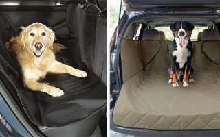 Чехол для собаки в автомобиль